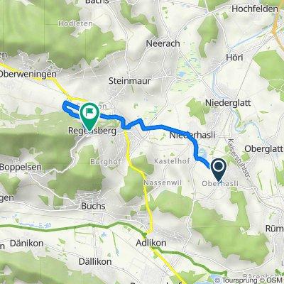 Sandrainstrasse 1S, Oberhasli nach Unterburg 29, Regensberg