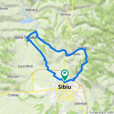 Sibiu - Hamba - Sura Mare - Ocna - Sibiu