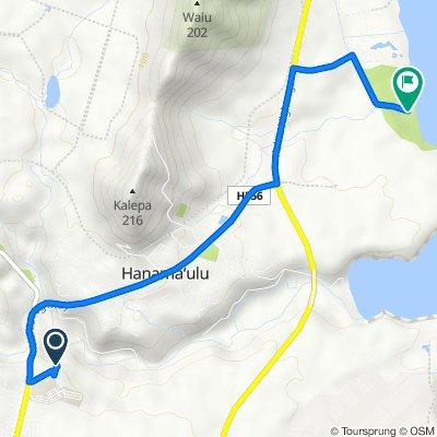Route to Kauai Beach Rd, Lihue