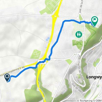 Trasa z Les Maragolles 1313, Cosnes-et-Romain