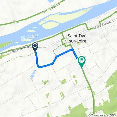 De Rue de la Pontonnière, Saint-Dyé-sur-Loire à 10 Route de Chambord, Saint-Dyé-sur-Loire