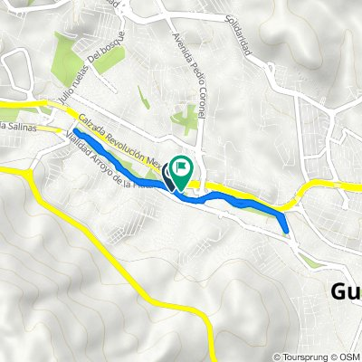 De Calle Sicómoro, Guadalupe a Paseo Francisco García Salinas 315, Guadalupe