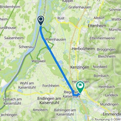 Rhein-Südtour-Teil-2