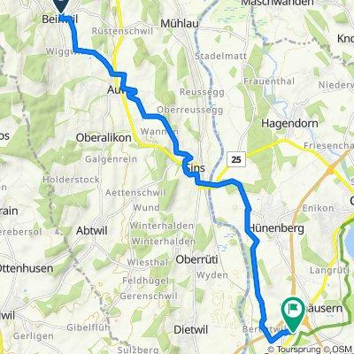 Kreuzäcker 7, Beinwil (Freiamt) nach Lettenstrasse 3, Risch-Rotkreuz