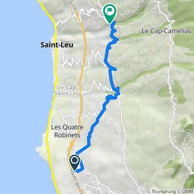 Ylang Ylang - haut Ch Surprise 748, Saint-Leu