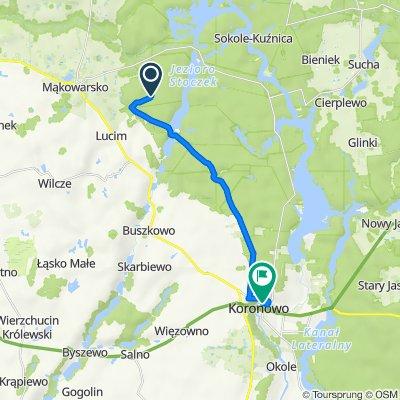 Trasa do Tucholska 39, Koronowo