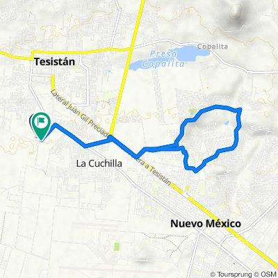 Route to Calle Alberto Fernández Pérez, Tesistán