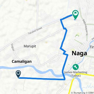 Mabolo-Camaligan-Gainza Road, Naga to Camias Street, Naga