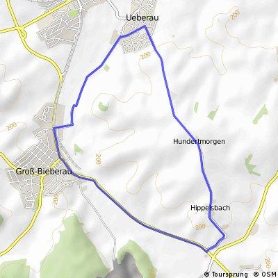 Duathlon Radstrecke Reinheim