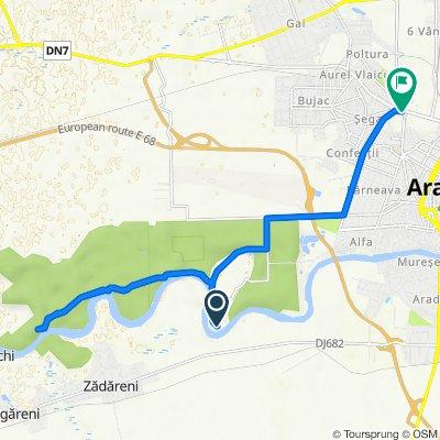 Unnamed Road to Calea Aurel Vlaicu U3, Arad