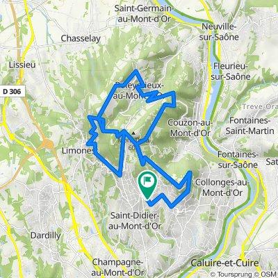 De 68bis Rocade des Monts d'Or, Saint-Didier-au-Mont-d'Or à 69 Rocade des Monts d'Or, Saint-Didier-au-Mont-d'Or