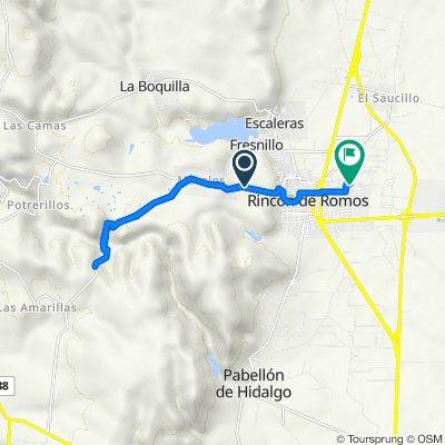 De Aguascalientes 119 a Tlatoani 133, Rincón de Romos