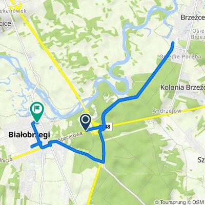 Spacerowa, Białobrzegi do Piekarska 9, Białobrzegi