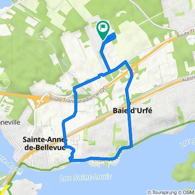 De 117 Rue Grenier, Ste-Anne-de-Bellevue à 117 Rue Grenier, Ste-Anne-de-Bellevue
