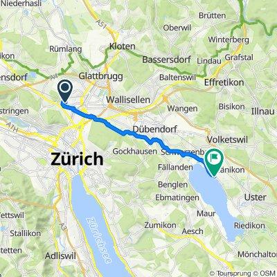 Neunbrunnenstrasse 215, Zürich nach Im Städtli 1, Greifensee