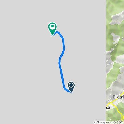 E81 73, Racovița to Strada Barajului, Râmnicu Vâlcea