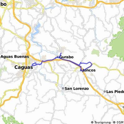 Ruta Gurabo,junco,gurabo caguas y gurabo.