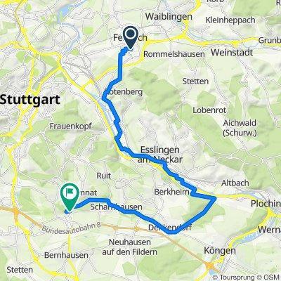 2021_Plieningen_auf_Radwegen_Treckingbike