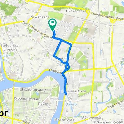 От Кондратьевский проспект, 64к5литА, Санкт-Петербург до Кондратьевский проспект, 62 к4, Санкт-Петербург