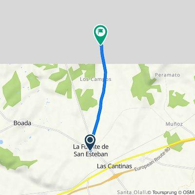 De Calle Manzano 2, La Fuente de San Esteban a Calle Larga 38, Buenamadre