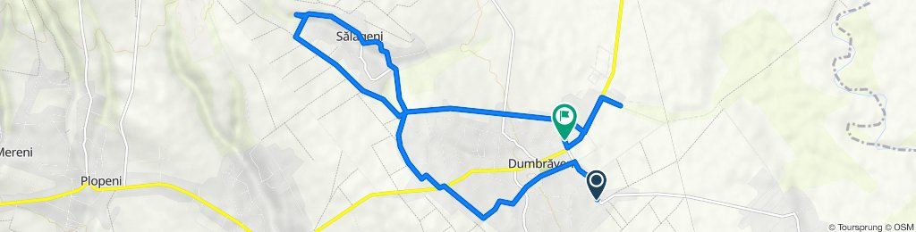 Route from Dumbrăveni-Bursuceni, Dumbraveni