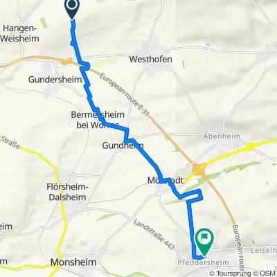 Route nach Paternusstraße 30A, Worms