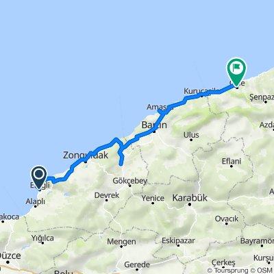 Ereğli Cide 250 km