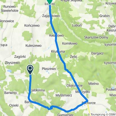 Unnamed Road do Starowiejska 2, Łosino