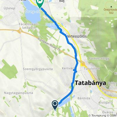 Seregély utca, Tatabánya to Tópart sétány 15, Tata