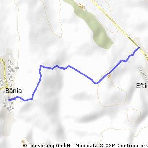 completed Eftimie Murgu - Bania