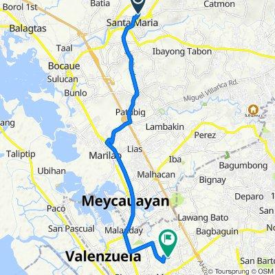 Doctor T Santiago Street 2160, Santa Maria to Unnamed Road, Valenzuela