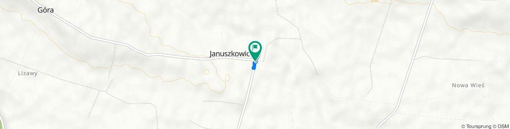 Januszkowice do Januszkowice