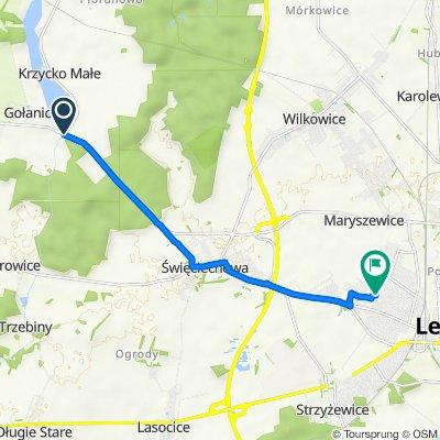 Trasa do Wojciecha Gersona 2, Leszno