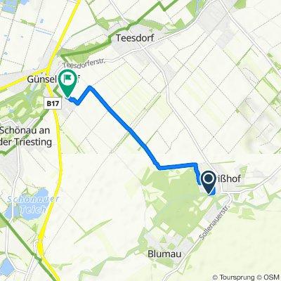 Leopold-Jarius-Straße 4–10, Neurißhof nach Ferdinand-Raimund-Gasse 28, Günselsdorf