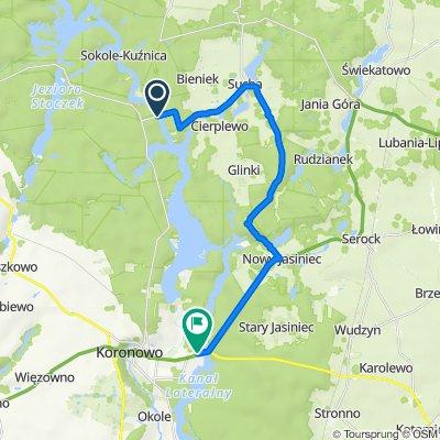 Trasa do Pieczyska 3, Koronowo