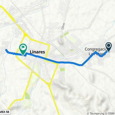 De Calle Chiapas 2217, Linares a Calle Díaz Mirón 1005, Linares