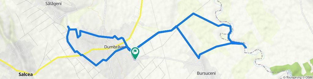 Dumbrăveni-Bursuceni, Dumbraveni to Dumbrăveni-Bursuceni, Dumbraveni