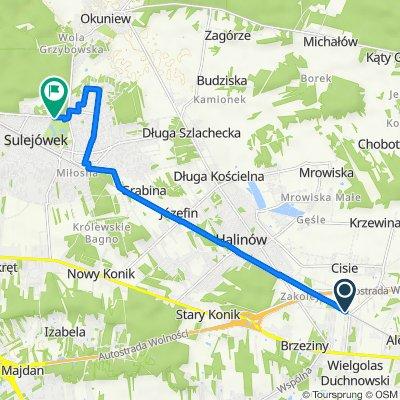 Cisie do Okuniewska 1A, Sulejówek