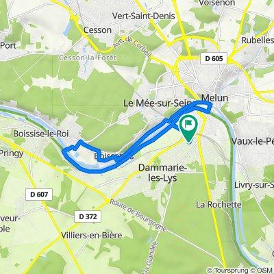 De 311 Avenue du Colonel Fabien, Dammarie-les-Lys à 311 Avenue du Colonel Fabien, Dammarie-les-Lys