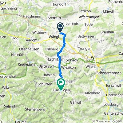 Stegenhof, Wängi nach Hauptstrasse 31, Fischingen