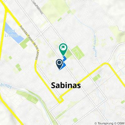 De Avenida Revolución 548, Sabinas a Cerrada Ramos Arizpe 791, Sabinas
