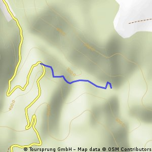 Cascade-Susara