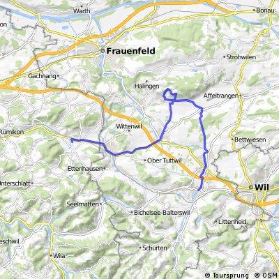 Sirnach -> Schloss Sonnenberg -> Elgg