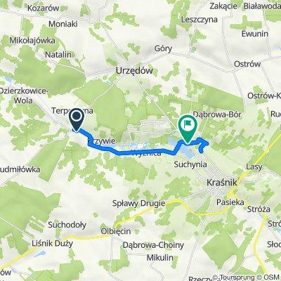 Dzierzkowice-Rynek do Urzędowska 364, Kraśnik
