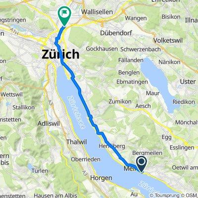 Seestrasse, Meilen nach Schaffhauserstrasse 239, Zürich