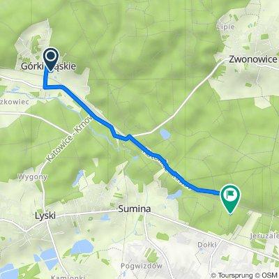 Leśna 4, Górki Śląskie do Unnamed Road, Gaszowice