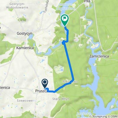 Trasa z Okrężna 3, Pruszcz