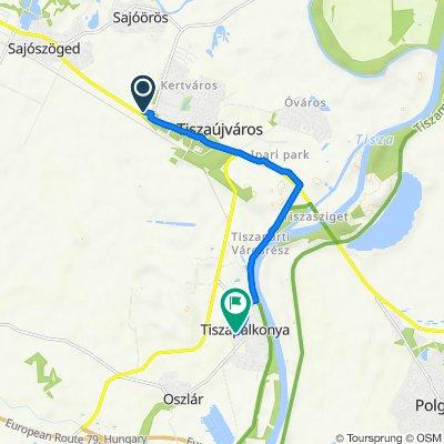 Debreceni út, Tiszaújváros to Ady út 25., Tiszapalkonya