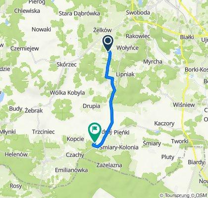 Trasa z Teodorów 138, Skórzec