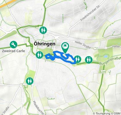 Stadtlauf Öhringen 2021 ALLEinklusive Lauf